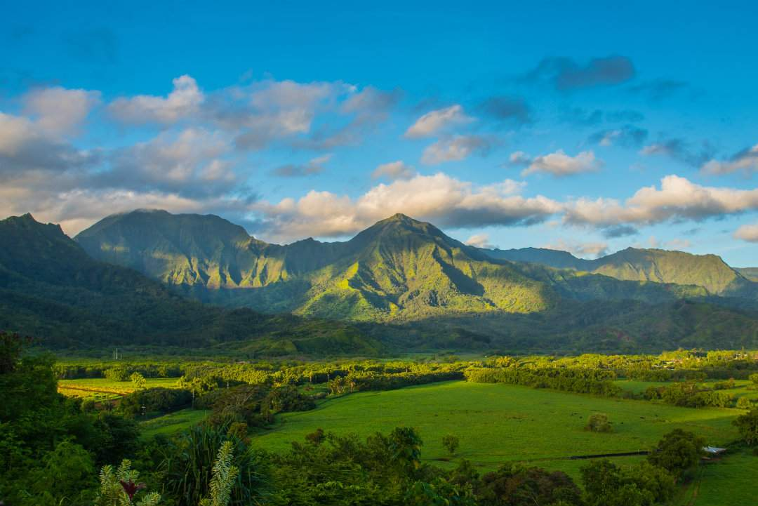 Hanalei Valley View